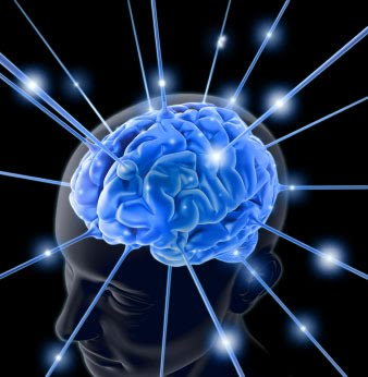 Electrical Impulses in the Brain