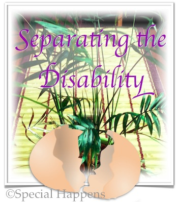 Separating the Disability - Of Eggs and Life