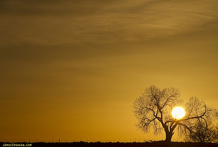 Rising Sun - Striking Photography by Bo / Flickr