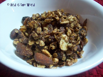 Chocolate Granola by Meredith Myers