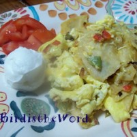 Bird's Southwest Migas