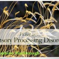 What is SPD – An Overview Sensory Processing Disorder, How to Recognize It, and What To Do About It