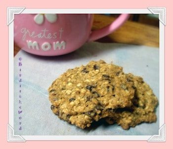 ... Chocolate is Essential to Life & GFCF Oatmeal Chocolate Chip Cookies