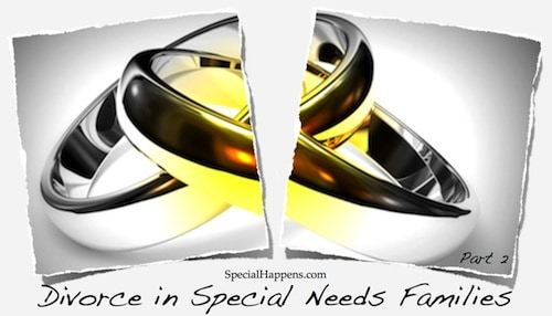Divorce in Special Needs Families-2