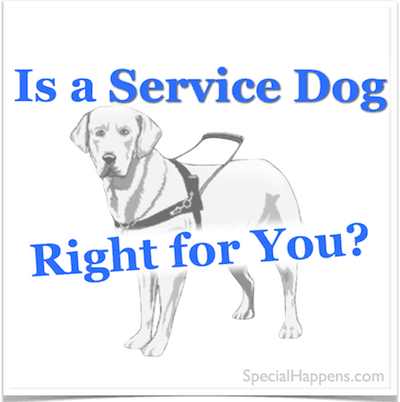 What to Consider Before Considering a Service Dog