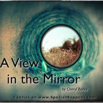 A View in the Mirror – That's Not How Life is Suppose to Be