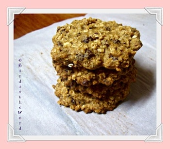 GFCF Oatmeal Chocolate Chip Cookies