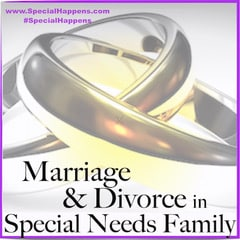 Marriage and Divorce in Special Need Families Series