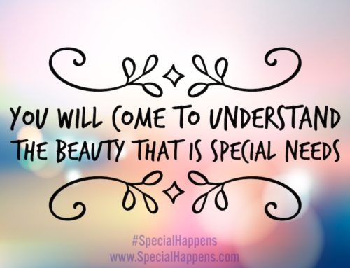 You Will Come to Understand the Beauty That is Special Needs